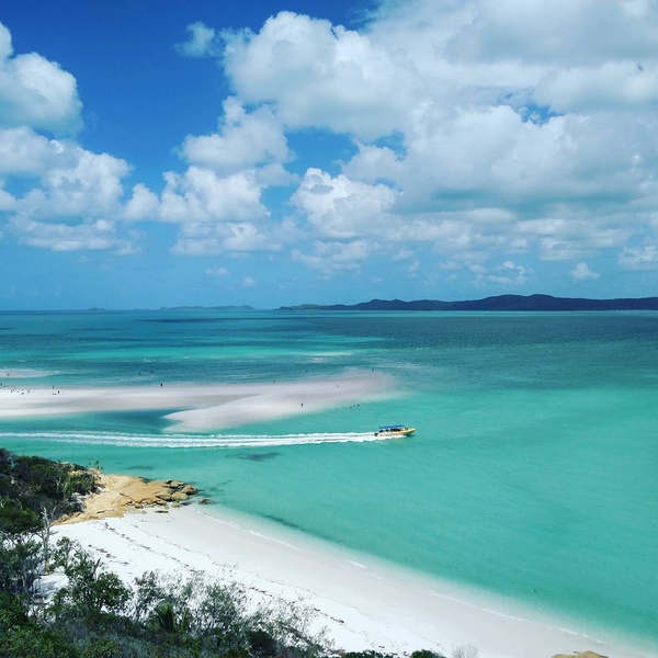 "Fisher on DIITU Communities ""Love Australia"". From https://communities.diitu.com/post/Whitehaven+beach-145639849392924"